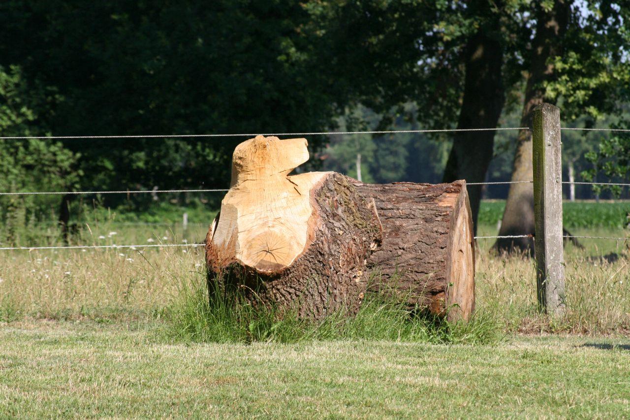 Baumstamm mit Bärenkopf
